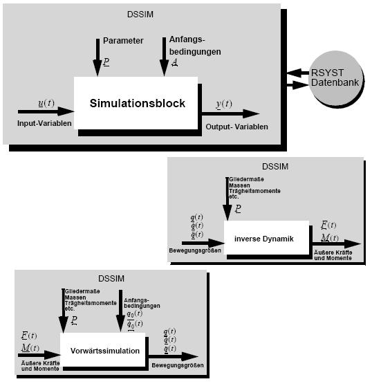 Simulationsmodell mit dem Ziel, die Gelenkmomente beim Gehen zu bestimmen.