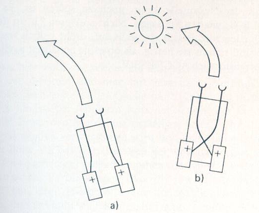 Furcht und Aggression: Wesen a) und b) befinden sich in der Nähe einer Reizquelle. Wesen b) richtet sich zur